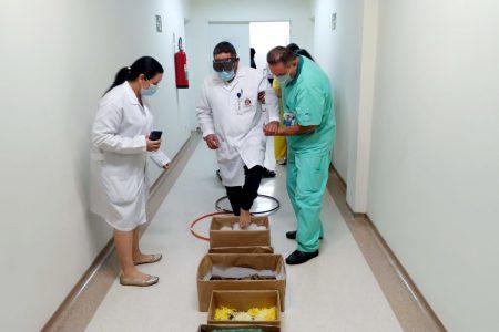 Atividades marcam o Dia Nacional da Pessoa com Deficiência no Hospital Regional de Registro